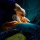 死体の病理解剖、激減の真相