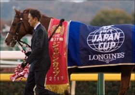 小嶋陽菜や白石麻衣...なぜ競馬番組にタレントが出演?競馬予想を極めるにはコレを読め!