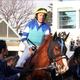 日本ダービー「斜行」騎乗停止H.ボウマンガックリ? 安田記念「有力香港馬」騎乗もご破算