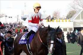 【安田記念(G1)展望】武豊リスグラシュー「最強牡馬」に挑む! 王者スワーヴリチャードVSマイル王ペルシアンナイト再び!