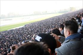 「3大始祖」消滅の危機......日本で「2頭」世界で「0.4%」の血を残すべく立ち上がったカタール王族の「行動」に称賛