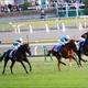 JRA絶望......? ジャパンC(G1)「外国馬1頭」可能性の衝撃。「ガラパゴス」日本競馬で役割終了か