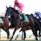 キタサンブラック、収入総額は驚異の32億円!来年の競馬を占う金杯の行方は?