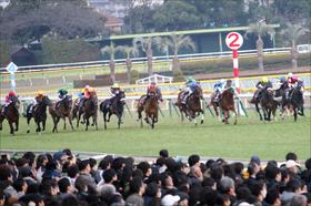 JRA柴田善臣「結構な馬」トーセンブレスがオークス出陣! 距離延長大歓迎