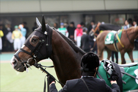 JRA武幸四郎厩舎より将来有望? 新規開業厩舎が「ダノンプレミアム厩舎直伝」&「大物バックアップ」で大活躍の予感
