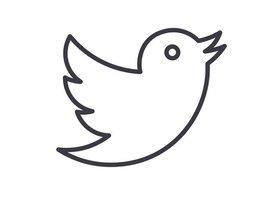 ツイッター、実質ユーザー数低迷が深刻化か…FBやインスタと比べ「脆さ」鮮明