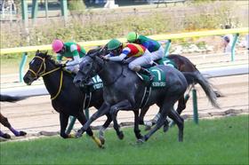 【マーメイドS(G3)展望】連勝目指すキンショーユキヒメ!立ちはだかるのはG1馬が兄妹にいるあの馬達か?
