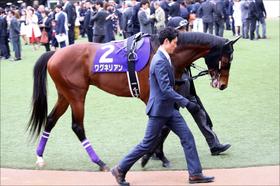 日本ダービー(G1)ワグネリアン皐月賞は「度外視」できる!? 「馬場」だけでない明確敗因と勝算