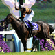 武豊、騎乗停止で天皇賞3連覇&凱旋門賞が水の泡…注目すべきは人気薄の「あの馬」