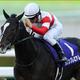武豊に次ぐ、日本ダービー勝利「超大物」が登場!? 競馬界の重鎮達が不動の主役ダノンプレミアムの「真実」に迫る