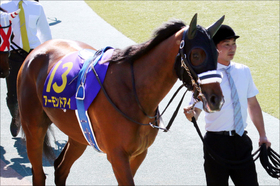 JRA「三冠達成」アーモンドアイは過去の三冠牝馬より上なのか。ジェンティルドンナとの比較は......