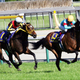 JRAジャパンC池添「ブチ切れ騒動」から6年。歴代最強牝馬アーモンドアイが「疑惑」の決着を経て挑戦する意義