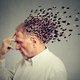 認知症を予防する意外な「日常の習慣」…●●の数と関連?