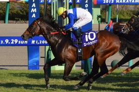 JRA顕彰馬ロードカナロア選出! 「アーモンドアイ大活躍」で種牡馬としての未来もバラ色