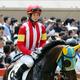 JRA藤田菜七子が受けた「教え」競馬サークルバックアップよりも心強い人々とは