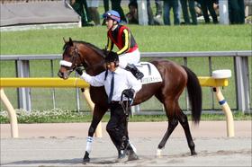 JRAセントライト記念(G2)「ダービー最先着馬」の法則!? 鉄板級から「地雷」まで......ダービー3着馬コズミックフォースの取捨は