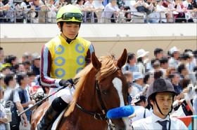 JRA三浦皇成「裁決不服ボヤキ」......今年好調キープで不運も影響なし?