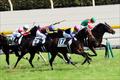【神戸新聞杯(G2)展望】日本ダービー馬ワグネリアンVS皐月賞馬エポカドーロ!! 数々の名馬が制覇した「王道トライアル」幕開け!