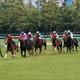 JRA新馬「実質角居勝彦厩舎」リアオリヴィアに要注意! M.デムーロも好感触