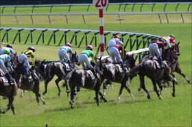 武豊スペシャルウィーク、和田竜二テイエムオペラオー......2018上半期、競馬界に大きな影響を与えた歴史的名馬たちの「訃報」を振り返る