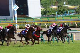 JRA愛知杯(G3)は「勢い」が重要!? 関係者情報で連勝中の馬で大勝負!
