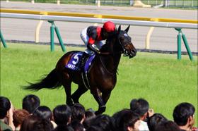 JRA金鯱賞に有力馬が集い「まるでG1レース」!? ペルシアンナイト、アルアイン、リスグラシュー、そしてエアウィンザーら中長距離の強豪が大激突!