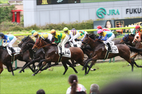 JRA菊花賞馬候補? 500万下のレースと侮るなかれ。注目ミスティックグロウが登場!