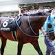 武豊オジュウチョウサン「100%」5馬身ぶっちぎり! 有馬記念(G1)1週前追い切りは「あの馬」に一抹の不安......