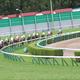 【函館スプリントS(G3)展望】JRA「仕切り直し」ダノンスマッシュ勝利必須! あの「実績馬」と一騎打ちか