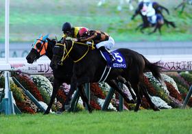 JRA、大誤算…札幌記念8勝の武豊に見放され大損失、人気のマカヒキに衝撃情報!