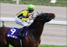 JRA1億円馬ギベオンがセントライト記念(G2)で激走の予感......良血馬がここでさらに活躍?