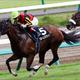 【ターコイズS(G3)展望】JRA「未完の大器」集結! 中山マイルに飛躍誓う牝馬たちの熱い戦い
