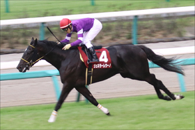 JRA菊花賞(G1)「逃げ宣言」ジェネラーレウーノの状態は......田辺裕信騎手の「さらなる飛躍」へ