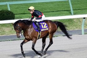 ルヴァンスレーヴJRA賞「最優秀3歳牡馬」の行方は? チャンピオンズC(G1)完勝で大混戦も「ダート馬の冷遇」の歴史
