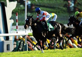 ジャパンカップ1点的中!競馬界の頂点に立つ馬主はやっぱり凄かった!阪神JFもあの奇跡が再び...