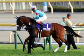 アーモンドアイ3000万円、ルヴァンスレーヴ2400万円、リリーノーブル1800万円。驚きの格安クラブ馬と結果を出せなかった高額馬達。