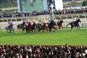 JRA東京新聞杯(G3)は「4点」で無問題!?「強力・現場情報」が導く「究極のゴリ押し馬」で勝負!!
