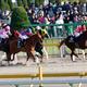 JRAチャンピオンズC(G1)「外国馬」パヴェル陣営に自信!? 「勝つために来た」日本の