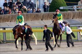有馬記念(G1)サトノダイヤモンド「ラストラン」ディープ牡馬代表「ラストランの奇跡」はあるか