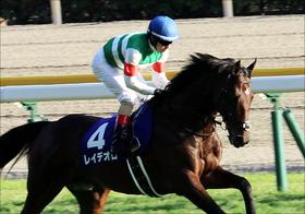 有馬記念「史上最強9馬身差勝利」の血。オジュウチョウサンレイデオロに流れる「シンボリクリスエス」の存在感