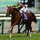 アーモンドアイ、今年だけで7億円荒稼ぎ!最強牝馬に匹敵する素質馬が揃った阪神JF