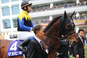 JRA京都記念(G2)マカヒキ「復調」情報!? 心強い同オーナー馬の復活