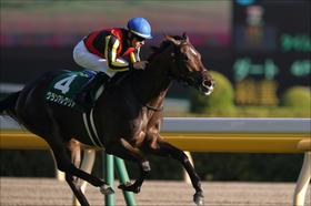 JRA朝日杯FS(G1)牝馬グランアレグリア「弱点」露呈!? 育成時代を知る関係者による「秘蔵」の情報網とは