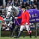 日本競馬の頂点、凄すぎるノーザンファームが狙う有馬記念。その秘策は?切られた武豊、選ばれたルメールは?