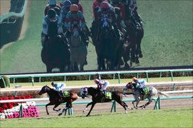 【フェアリーS(G3)展望】良血レーヴドカナロアに好機到来? ハイレベル3歳牝馬戦線にヒロイン候補また1頭?