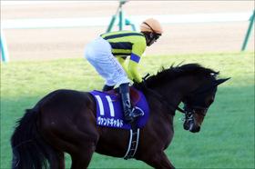 【きさらぎ賞(G3)展望】西の出世レースを制するのはどの馬か?将来有望な若駒たちの戦いに要注目!