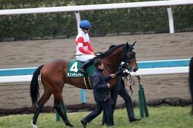JRA「本領」ディープ産駒高額牡馬続々勝利。今年も「終わってみれば」はある?