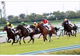 JRA関東・新人騎手の「悲惨すぎる」現状......「騎乗停止」「落馬事故」「距離誤認」アクシデント連鎖の