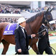アーモンドアイ「弱点」はアウェーの洗礼!? ドバイターフ(G1)へ国枝栄調教師が語る「懸念」と「ドバイのルール」に飲まれた日本最強馬