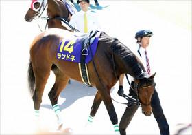 JRA中山牝馬S(G3)は「3点」で十分? 至高の「関係者情報」で混戦を読み解く!